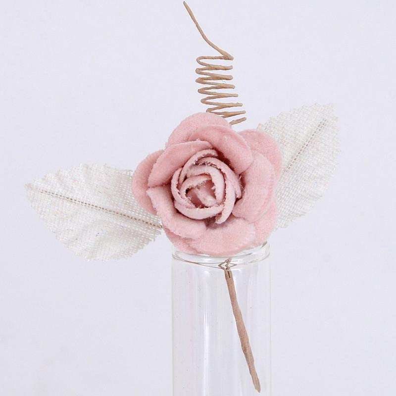 Rose Velluto rosa