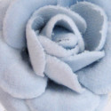 Rose Velluto cielo