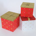 Set 3 scatole Natale Cristallo di Neve