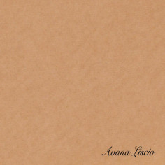 CASSETTA Cartone Avana liscio