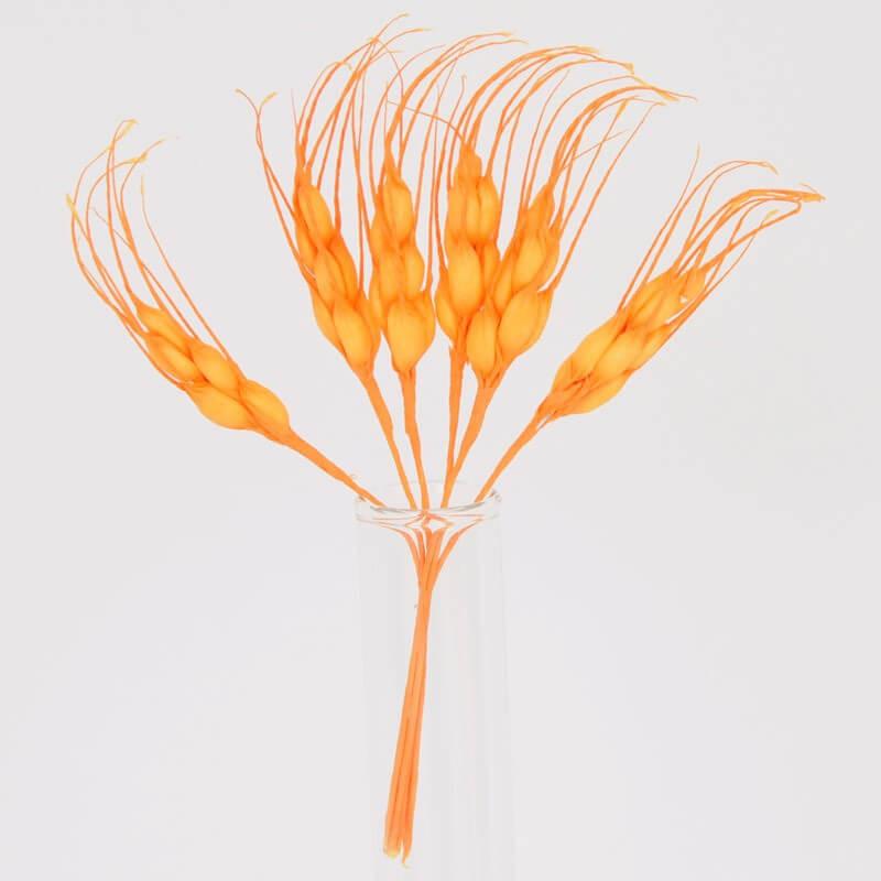 Spighe Gialle e Arancio