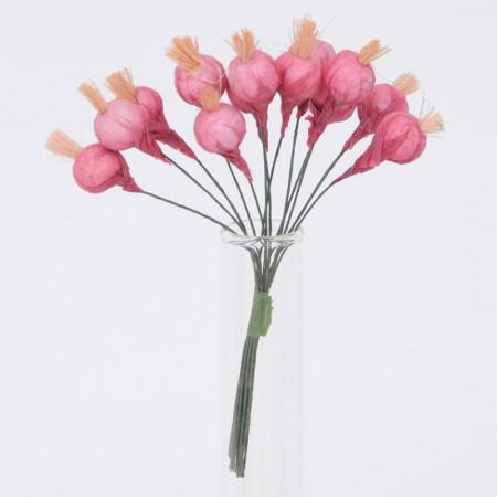Cipolline ornamentali con gambo