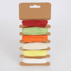Cordoncini in Blister da 6 colori assortiti 5 metri per Colore