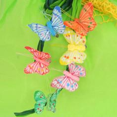 Farfalle con clip Colorate Assortite