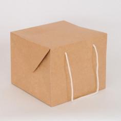 Bag Box Food
