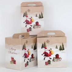 Scatole Pandoro e Bottiglia Santa Claus
