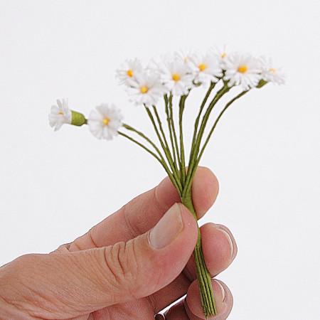 PICCOLE MARGHERITE Confezione di 12 mazzolini da 12 Fiori (144 fiori)
