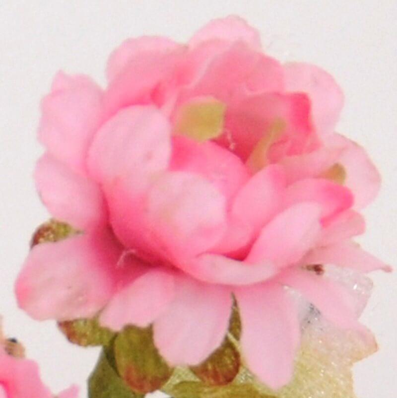 Pratolini Rosa