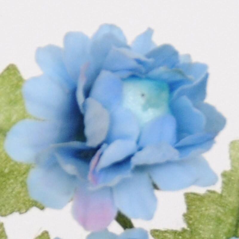 Pratolini Azzurri