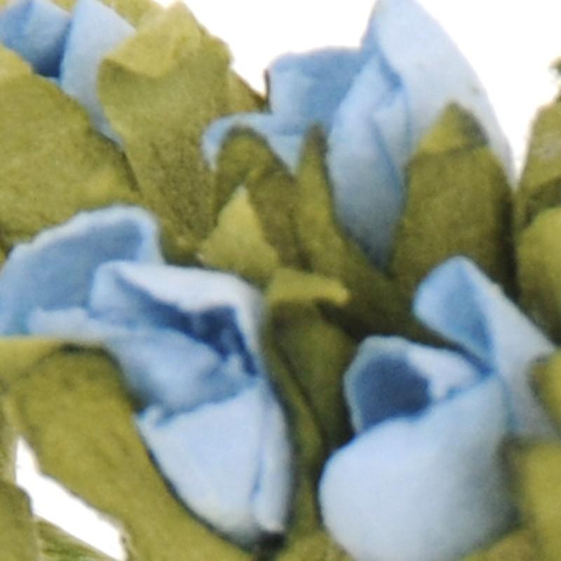mini Azzurre