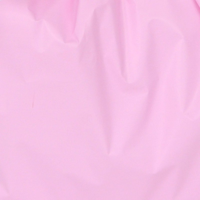 rosa 07