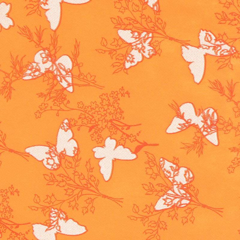 tnt farfalle arancio