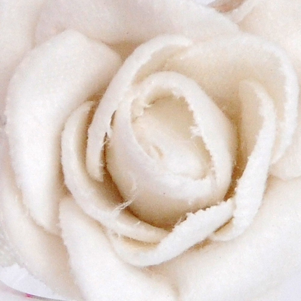 vellutate bianco-caldo