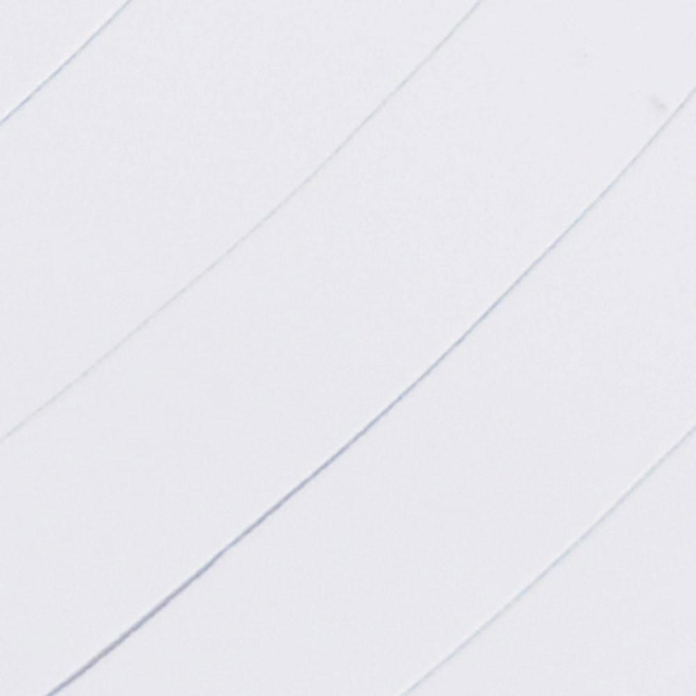 bianco forex